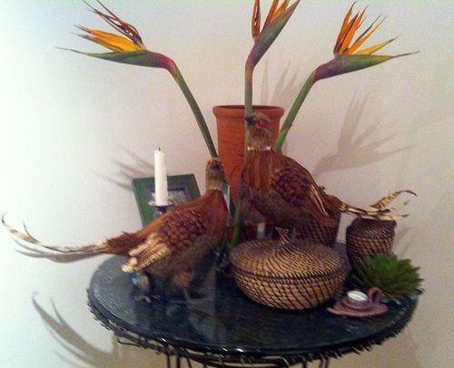 Pinecone Pheasants Wisteria