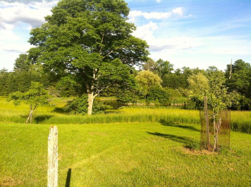 Gerts pond