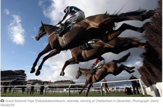Grand National 2015 as reported in The Guardian